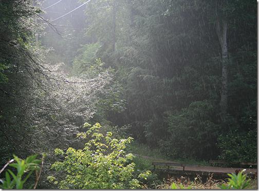 RainSunshine